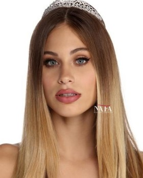 Nafawigs Blonde Ombre Human Hair Wig Transparent Full Lace Human Hair Wig